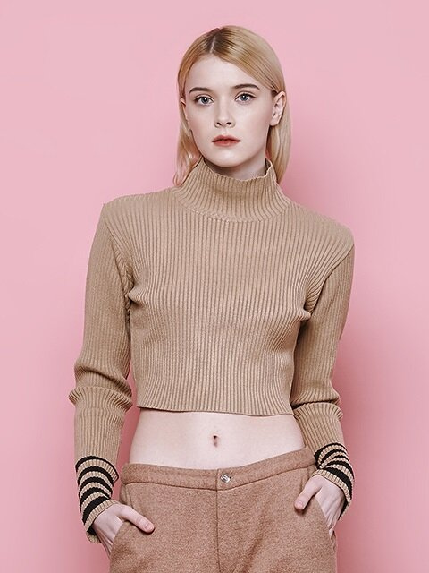 crop high neck knit