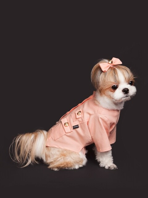 Gold botton dress-pink