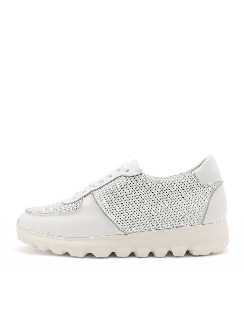 [WOMEN] Forest Sneakers SDA042-WH