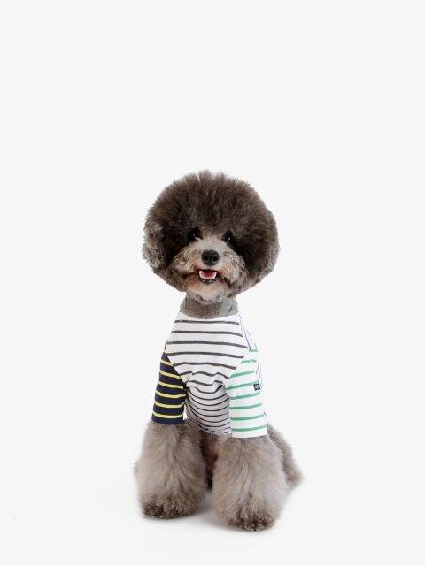 강아지 티셔츠 - 블루
