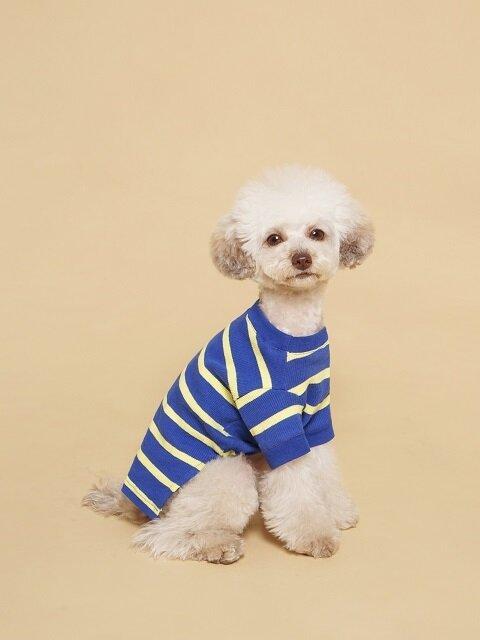 Fresh Stripe Tee-Shirt Blue