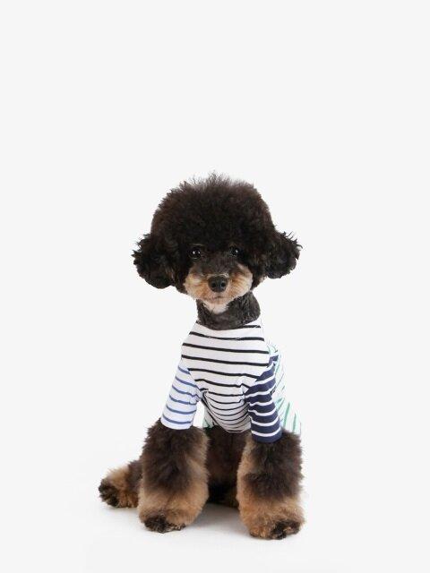 강아지 티셔츠 - 그린