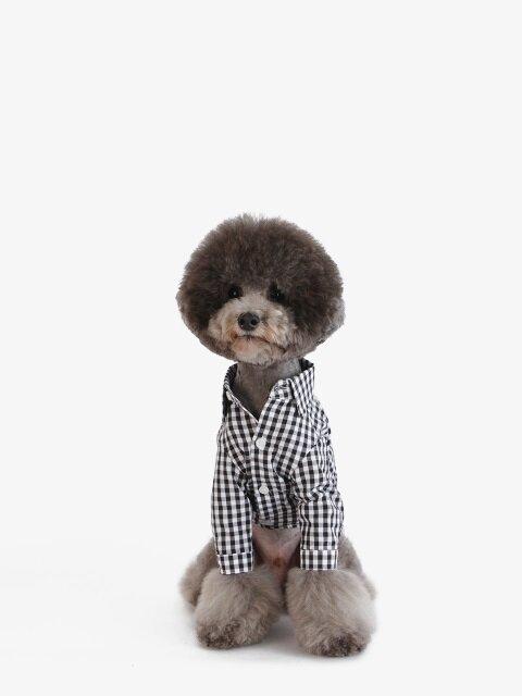강아지 셔츠 - 블랙
