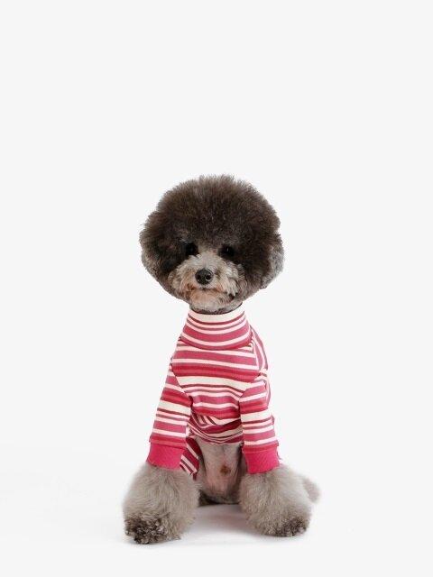 강아지 옷 올인원 - 다홍