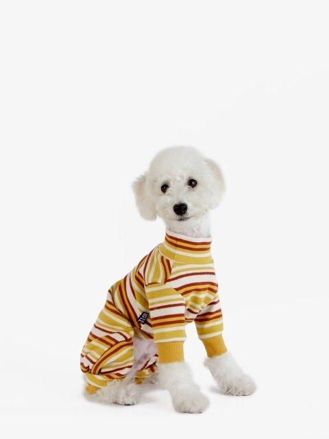 강아지 옷 올인원 - 노랑