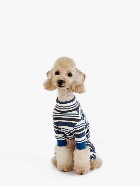 강아지 옷 올인원 - 블루