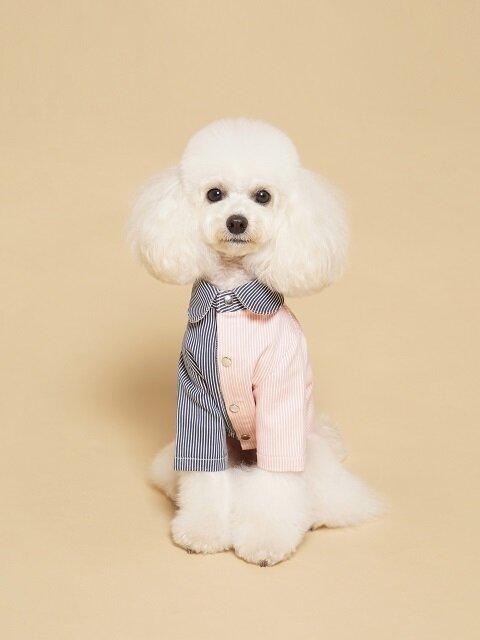 Coloration Stripe Shirt Pink & Navy