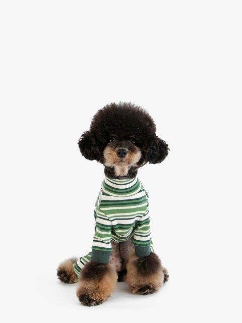강아지 옷 올인원 - 그린