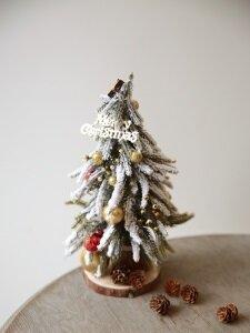 크리스마스 트리 스노우_S