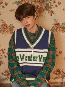 Wonder Year Knit Vest (Navy)