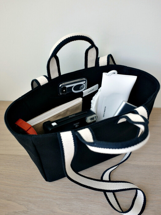Mini Two-tone Strap Bag (black)