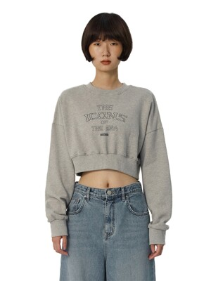 C LETTERING CROP SWEATSHIRT_GREY
