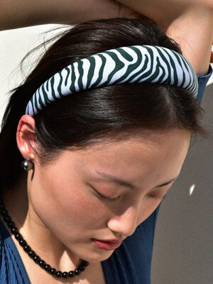 Zebra Cozy HAIRBAND (Blue Green)