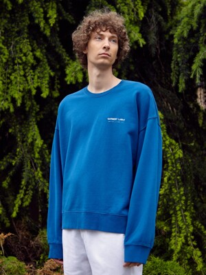 Relaxed Sweatshirts - Blue