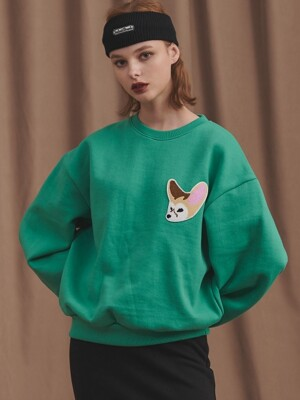 19 TEDDY FOX MTM [GREEN]