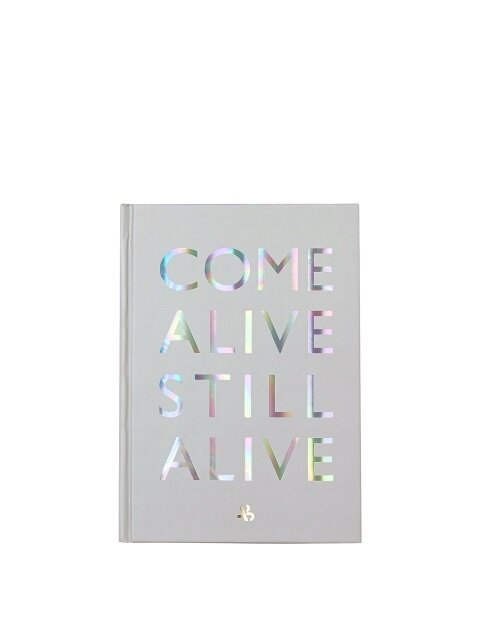 COME ALIVE STILL ALIVE Note aaa051u(Gray)