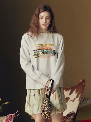 Fluff Print Sweatshirt in L/Grey_VW0WE3500