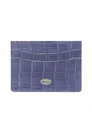 crocodile card slot Blue bright