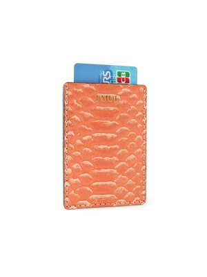 Card Case_Anaconda Orange