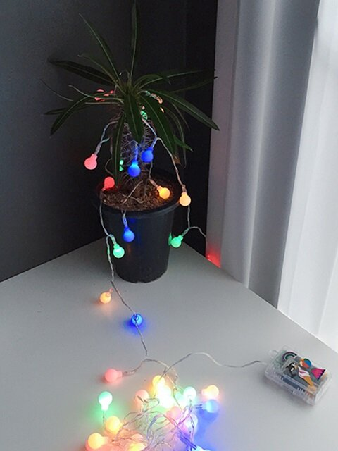 Cherry String lamp