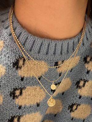 (3set) Two Coin Necklace